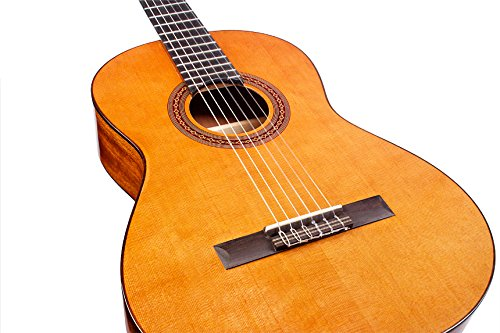 top 10 best classical guitar reviews ultimate buying guide 2019. Black Bedroom Furniture Sets. Home Design Ideas