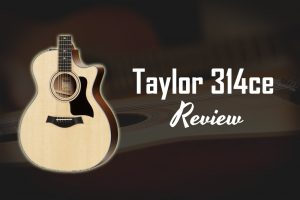 taylor-314ce review